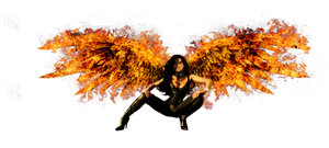PHOENIX_by_CrimzonStar