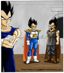 DragonBall Multiverse : Vegeta