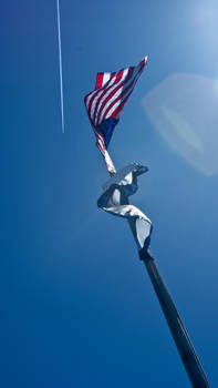 Run it up the flagpole