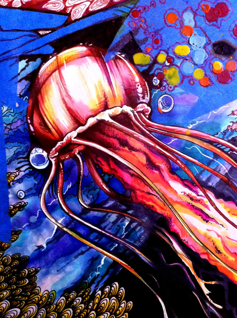 Jellyfish Drawing Color Colorful Jellyfish Drawing