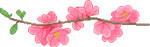 F2U | Flower Branch Divider - Left by ProfileDecor