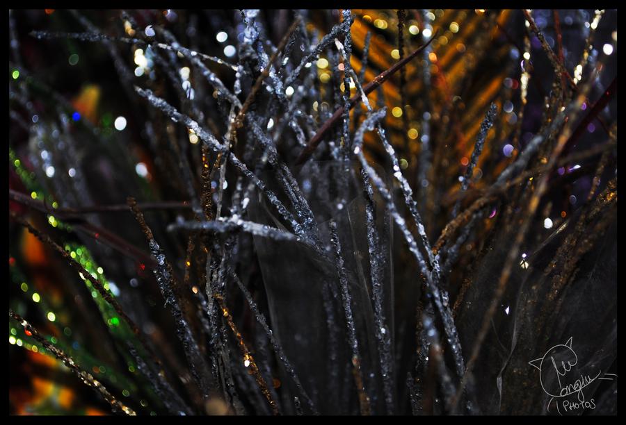 Bright Winter by Eltoras