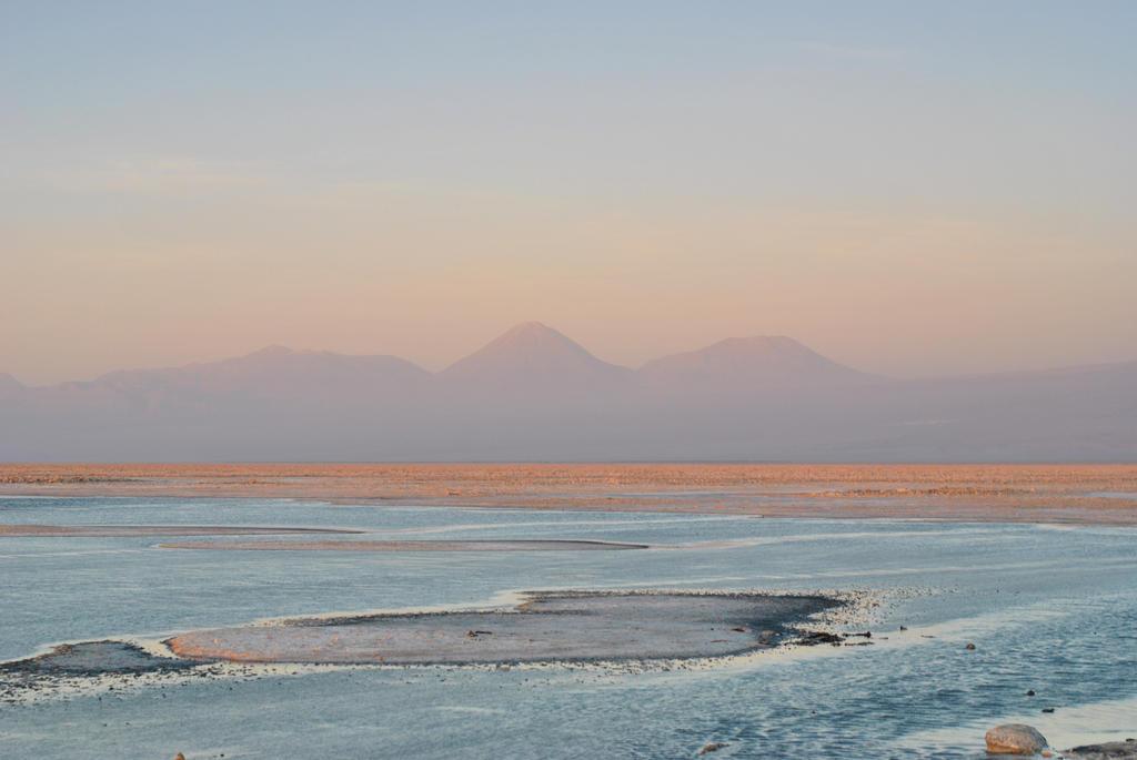 Chaxa Lagoon by turulato
