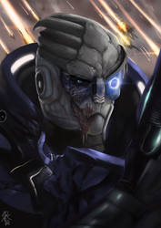 Commission: Garrus by reikakukoto