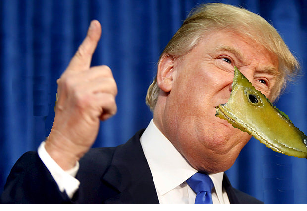 Quack Goes The Trumpy xD by kitty22puppy20