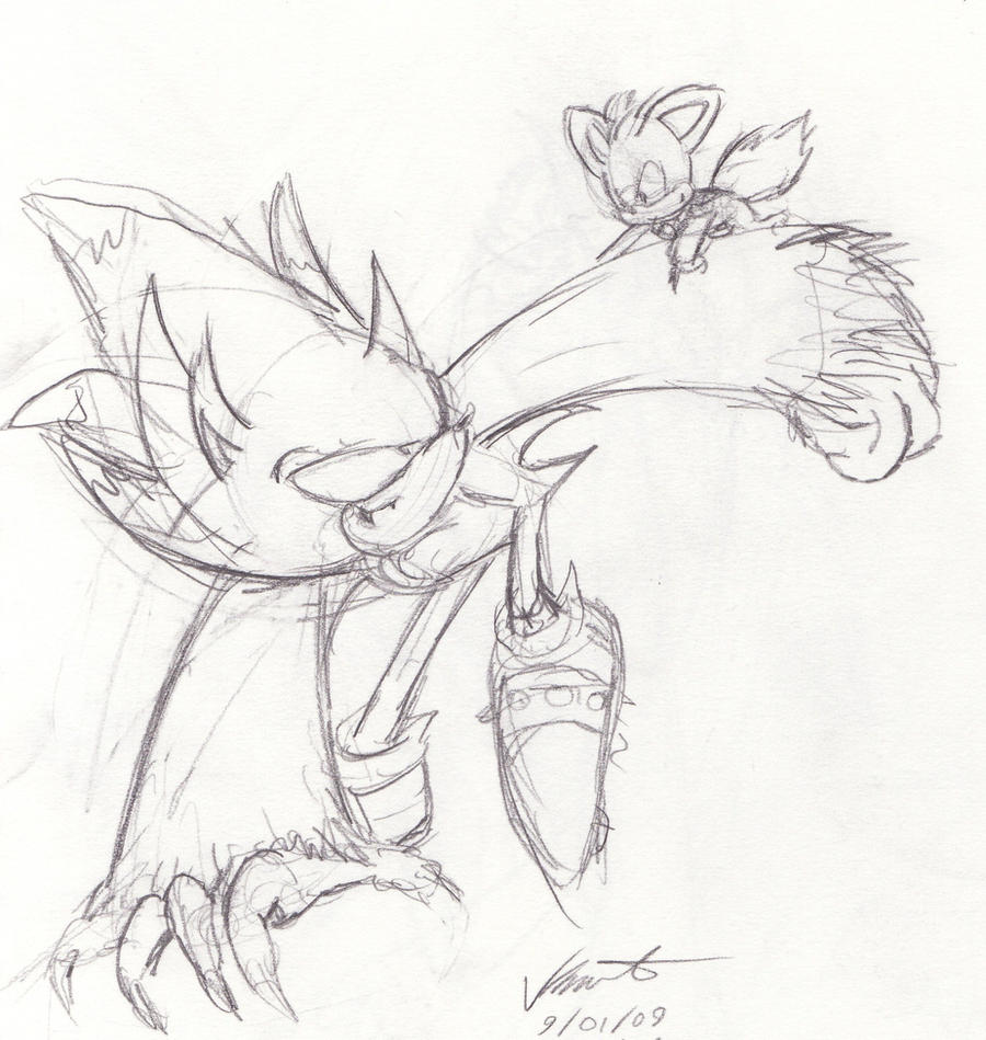 sonic the werehog and chip by airswift on deviantart