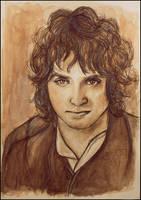 Frodo by SallyGipsyPunk