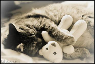 Sweet Dreams by scarper493