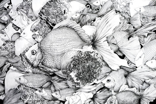 Fishes and girl
