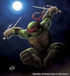 Raphael attacks
