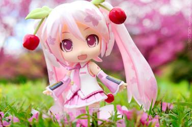 Sakura garden by Bellechan