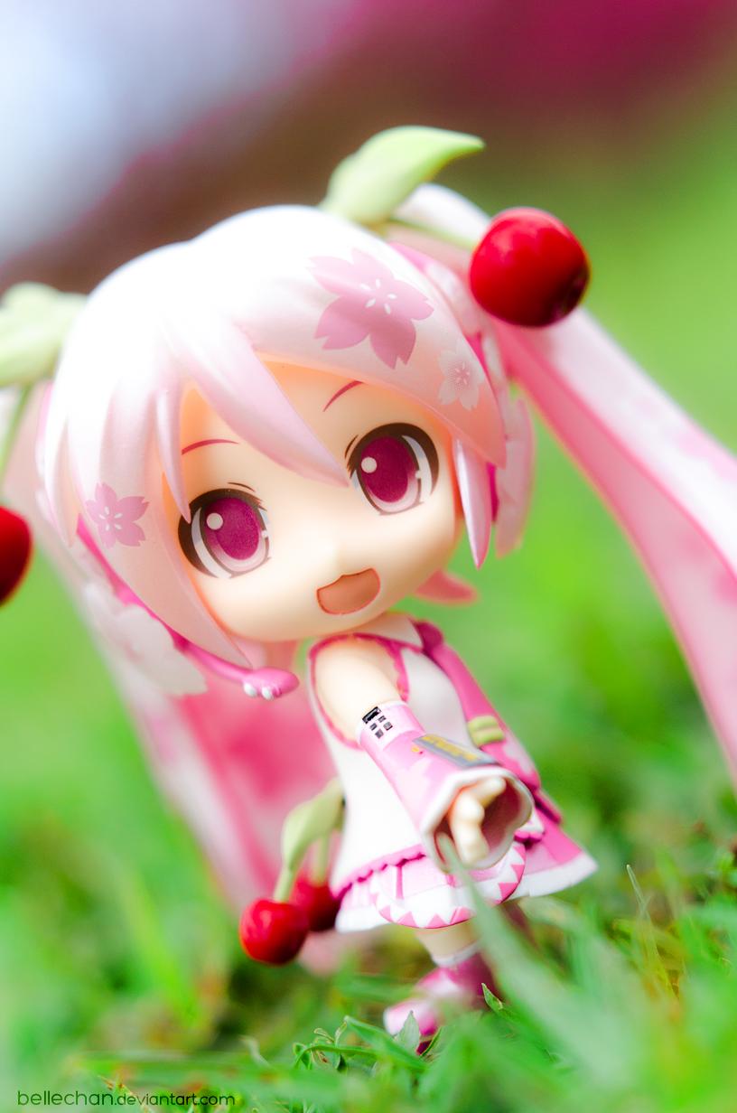 Sakura Miku by Bellechan