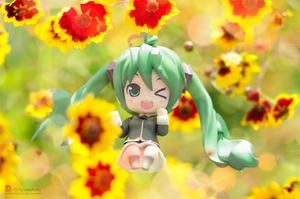 Flowers by Bellechan