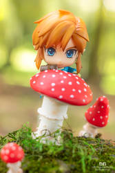 Link and the mushroom by Bellechan