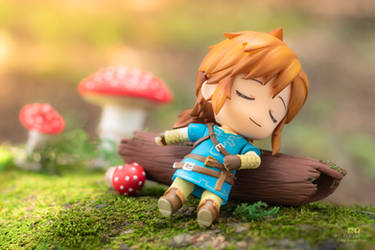 Link and the mushroom [2]