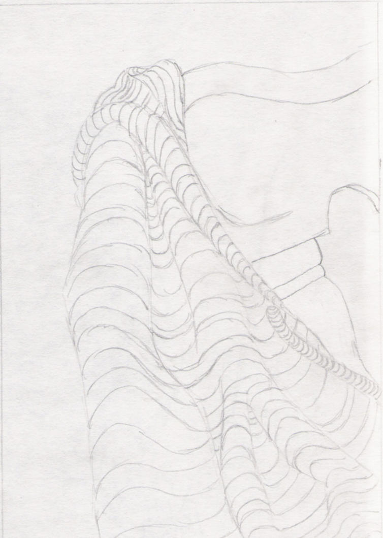 Contour Line Drawing Jobs : Cross contour lines by kobbi on deviantart