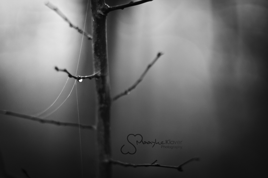 Lost Soul by MaaykeKlaver