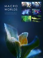 Macro Worlds Calendar 2017 by MaaykeKlaver
