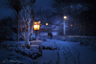 In bright white snow, when everyone sleeps