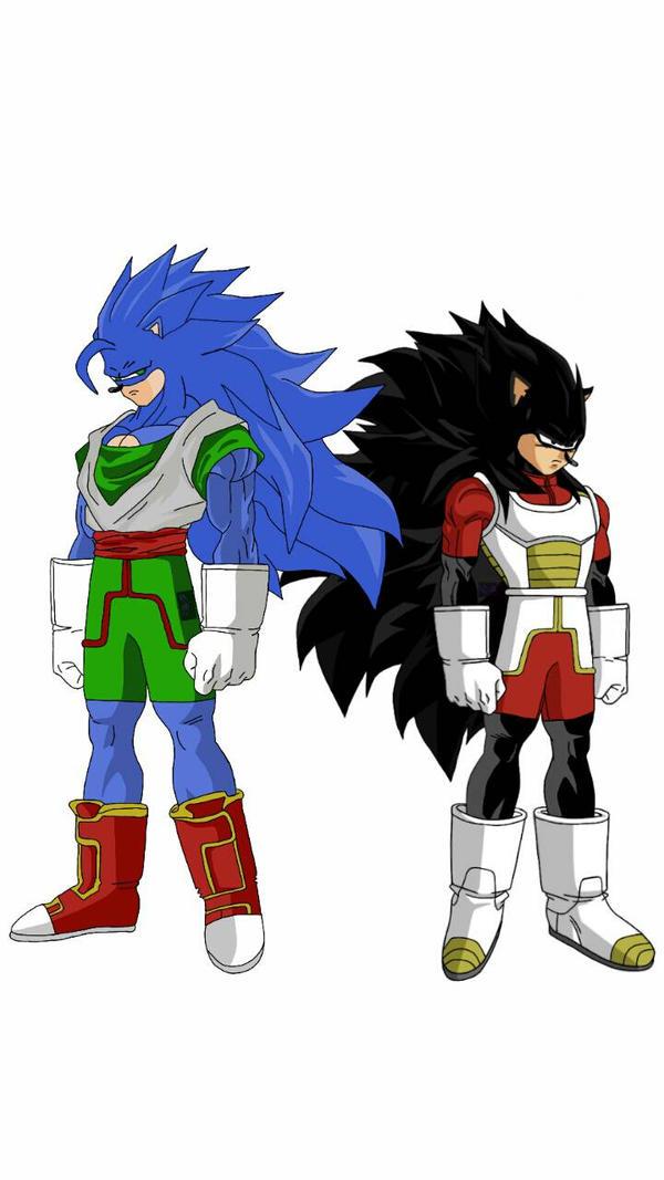 Goku  Vegeta? or Sonic  Shadow?