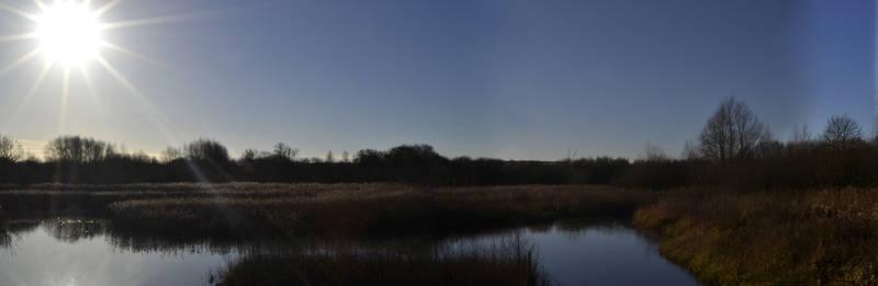 A SUN FILLED MORNING - Brandon Marsh, WestMidlands