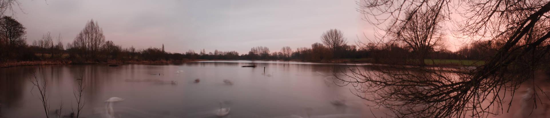 STRIKING SUNLIGHT - Wyken Slough, West Midlands