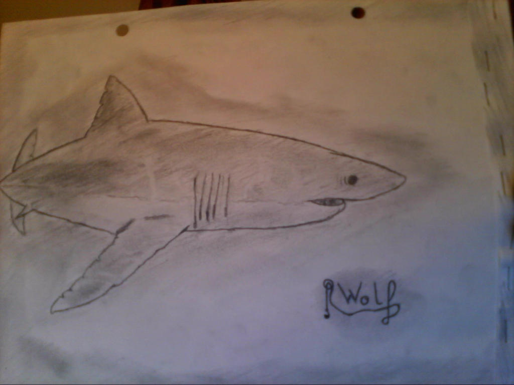 Requin blanc dessin papier by wolfy41336 on deviantart - Requin dessin ...