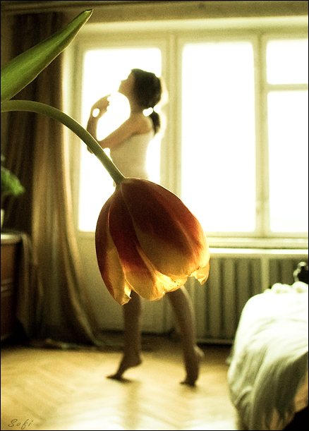 Morning Mood by Tatiannna