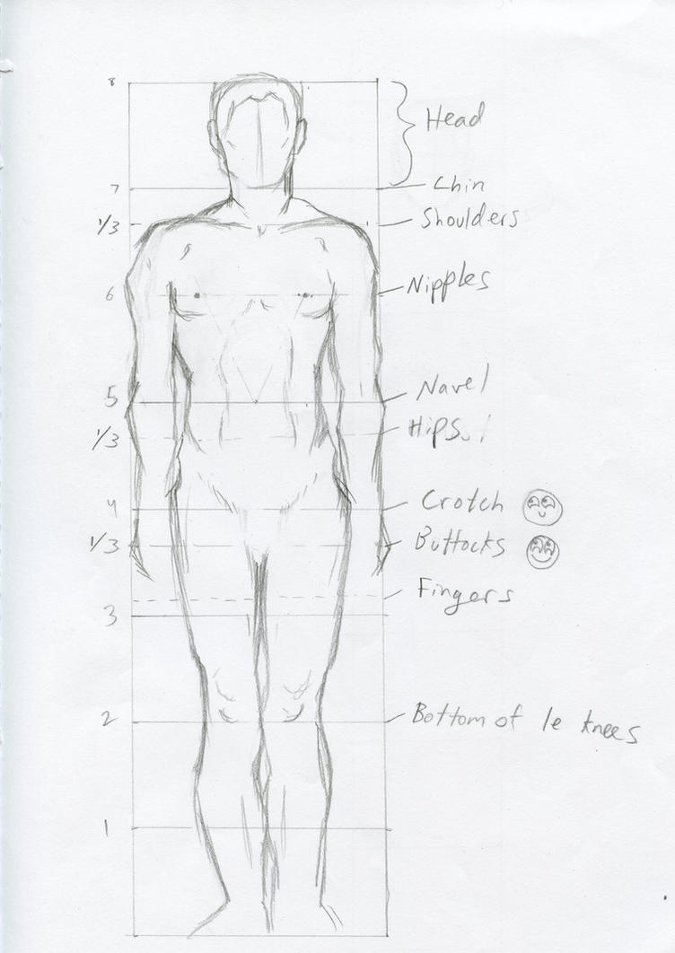 Studying Male Anatomy By A Girl In A Sweater On Deviantart