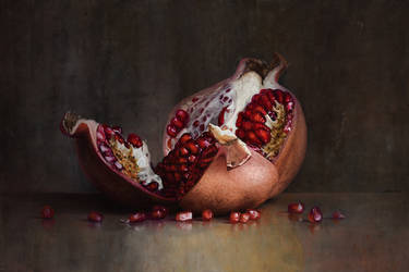 Pomegranate by m-v-c