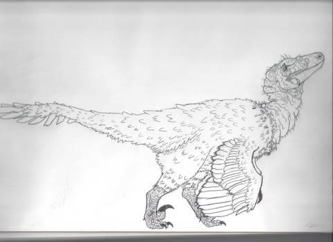 Finished Raptor