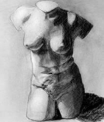 More torso by diosaperdida