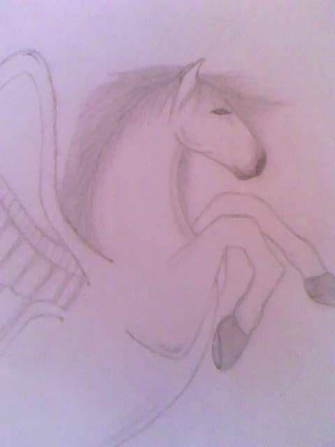My Pegasus Drawing by Arcee327