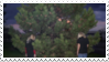 100 Gecs Stamp