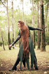 The Hobbit: The Desolation of Smaug   Tauriel