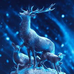 Deer by shahanb