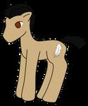 Matt Pony
