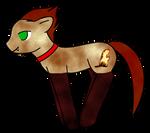 Aki Pony