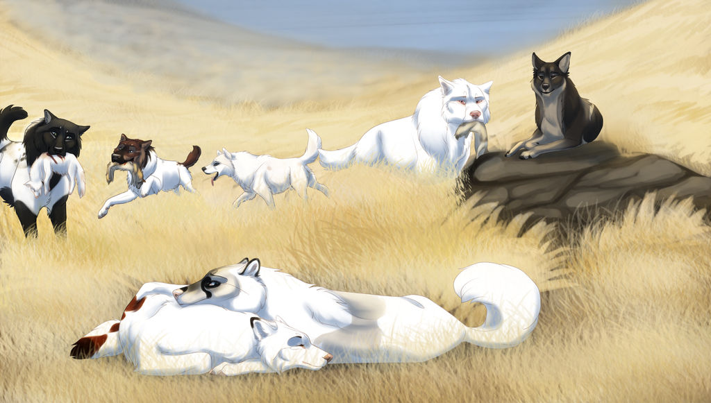After the Hunt - Coyote Hunt by xFrostfall