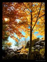 Autumn by Lidija-Lolic