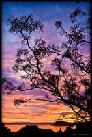 Colorful sunset by Lidija-Lolic