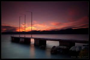 Purple dreams by Lidija-Lolic