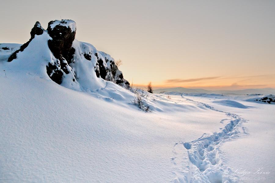 Through the thick snow by Lidija-Lolic