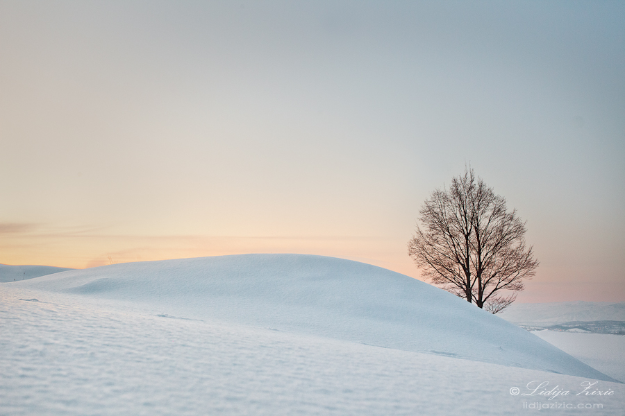 Silence by Lidija-Lolic