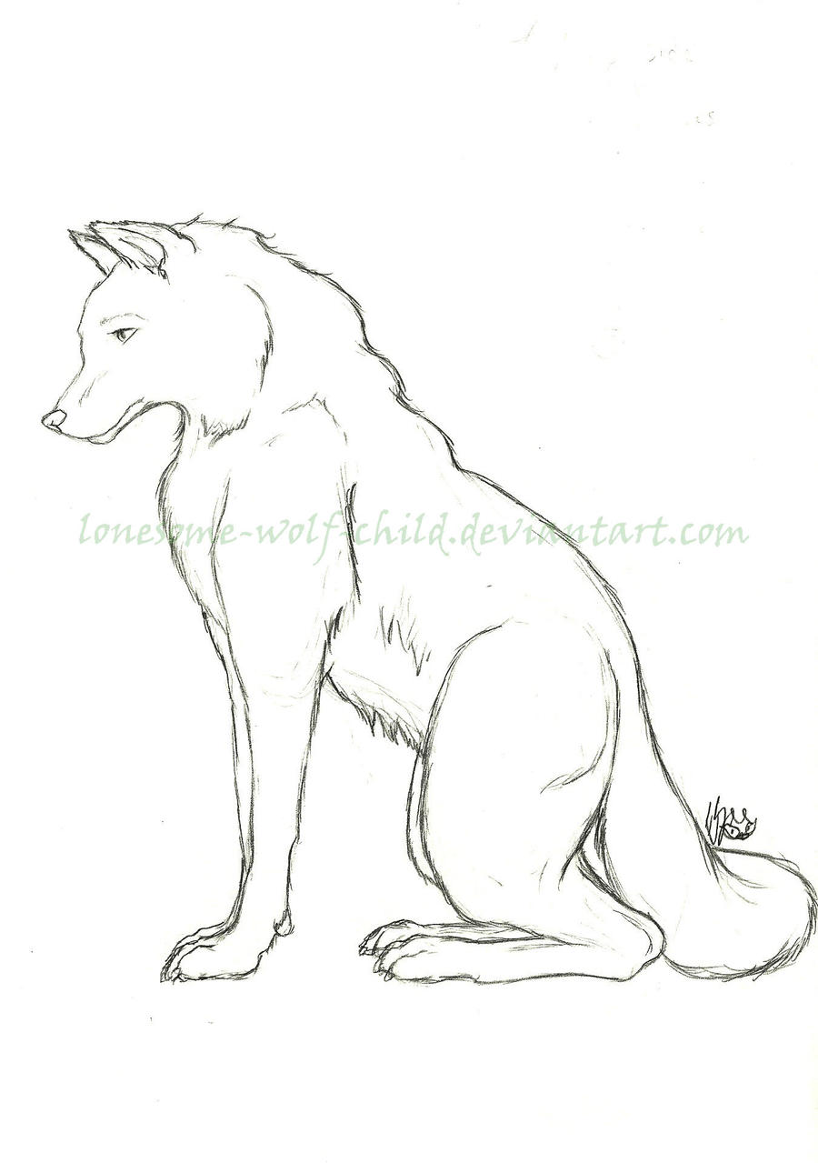 Sitting Wolf Drawings Animals Sitting Wolf by