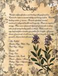Book of Shadows: Herb Grimoire - Sage
