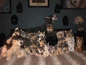 Wolf Plush Collection 2019