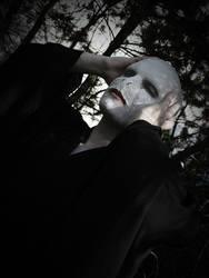 Hapsu Cosplay - Lord Voldemort