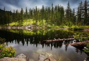 Mason lake by dead-star