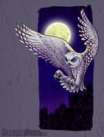 Snowy Owl Illustration by jameskoenig1